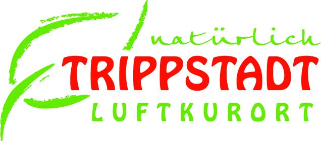 Wetter Trippstadt